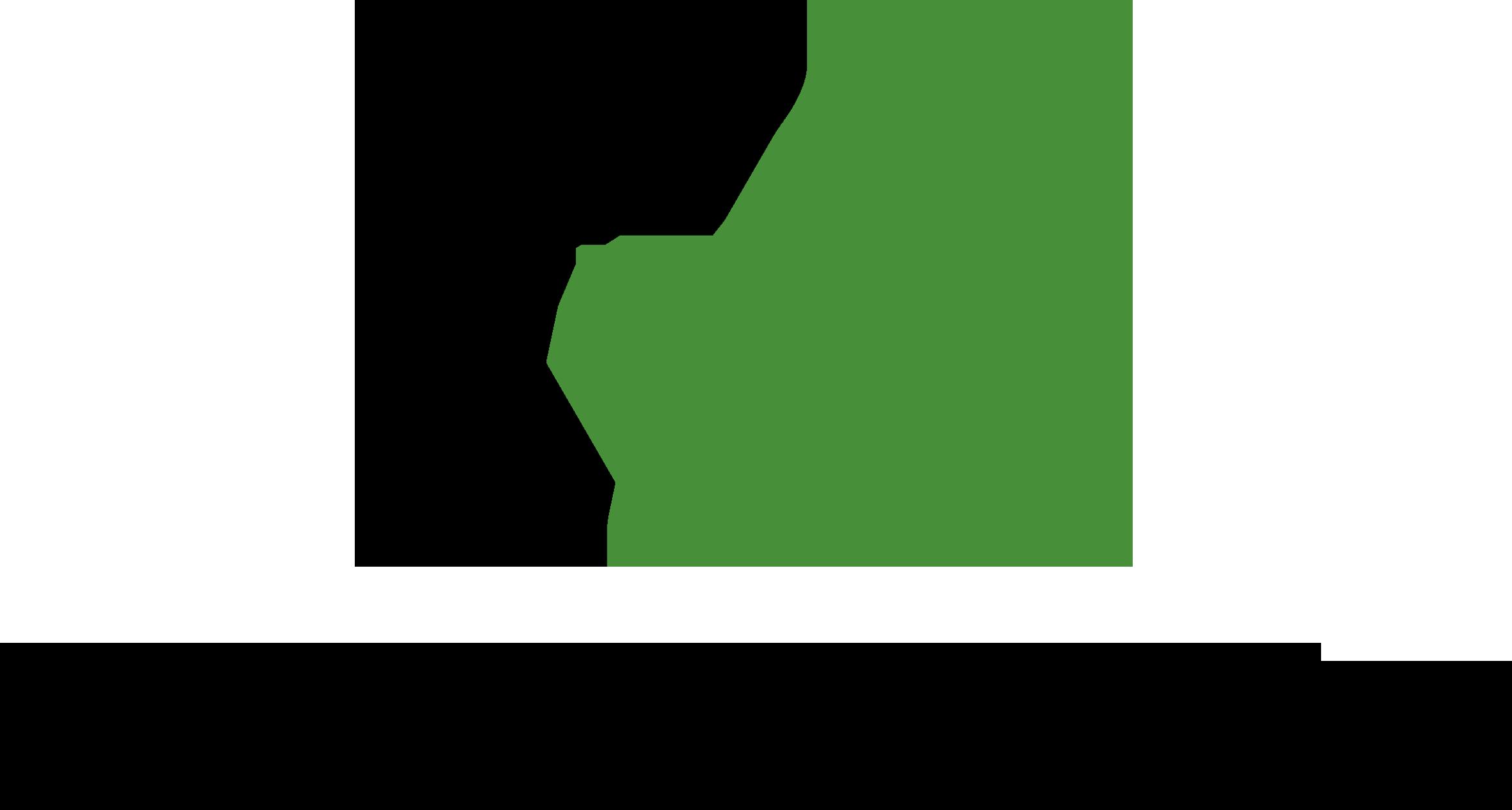 Green Pix Partner